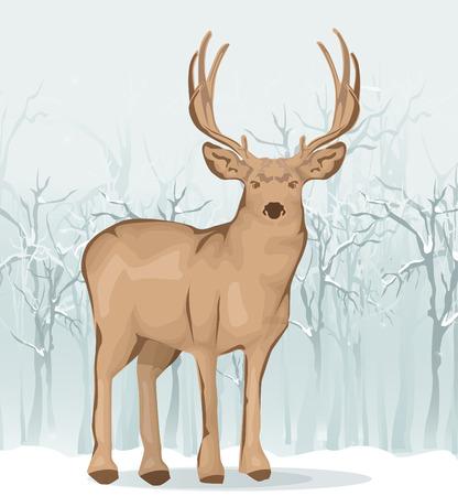 bucks: Reindeer illustration Illustration