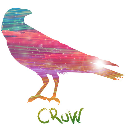 insecure: Abstract crow
