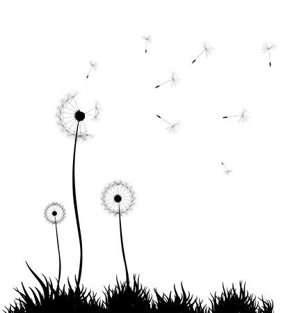 decode: Dandelion background Illustration