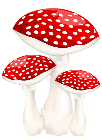 Red poison mushrooms Иллюстрация