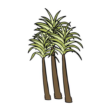cartoon palm tree: cartoon palm tree