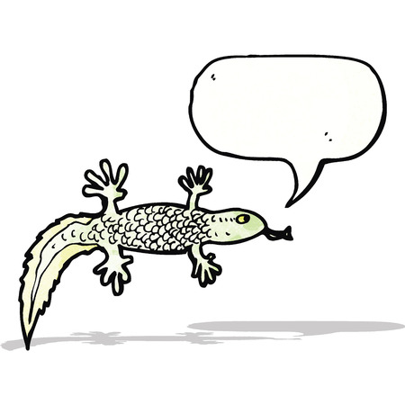 newt: cartoon newt