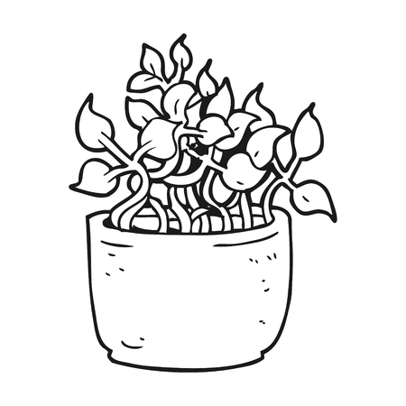 house plant: freehand drawn black and white cartoon house plant Illustration