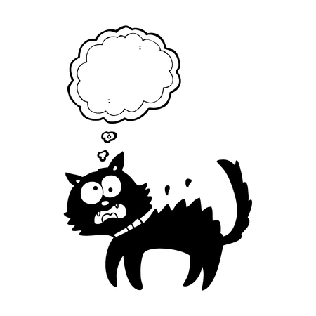 unlucky: freehand drawn thought bubble cartoon scared black cat Illustration