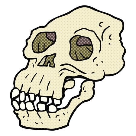 proto: freehand drawn cartoon ancient skull