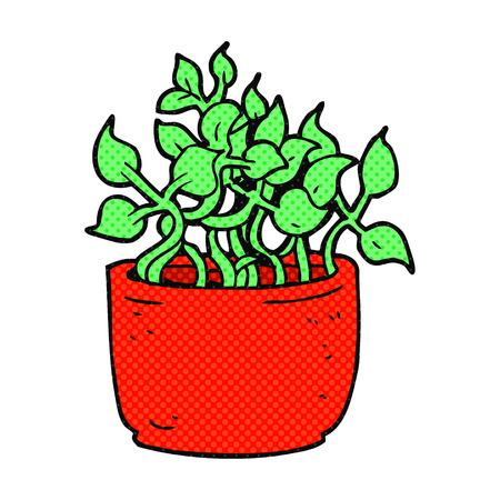 house plant: freehand drawn cartoon house plant