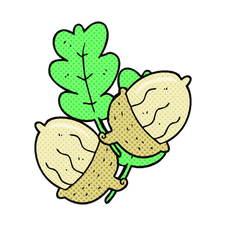 acorns: freehand drawn comic book style cartoon acorns