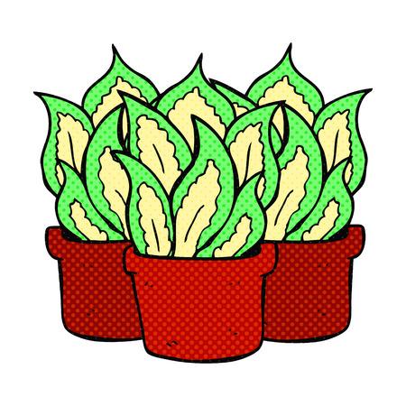house plants: freehand drawn comic book style cartoon house plants