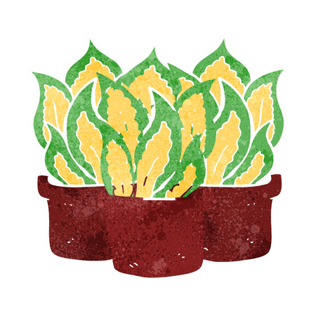 house plants: freehand drawn retro cartoon house plants