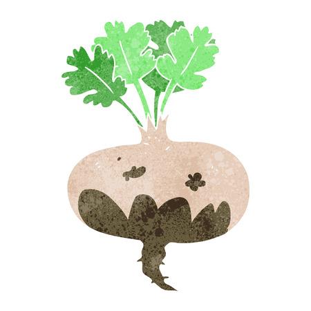 turnip: freehand drawn retro cartoon muddy turnip Illustration