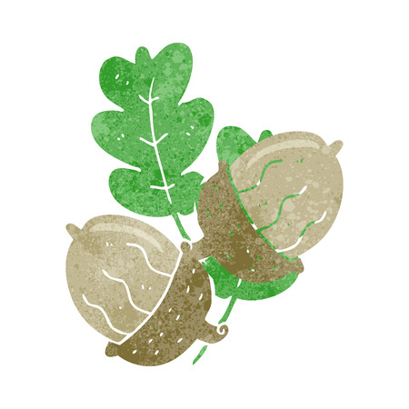 acorns: freehand drawn retro cartoon acorns