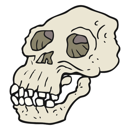 archeology: freehand drawn cartoon ancient skull