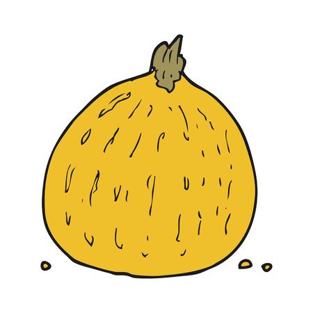 squash: freehand drawn cartoon squash