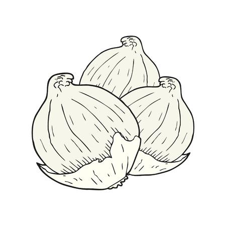 cebollitas: dibujado a mano alzada cebollas de dibujos animados