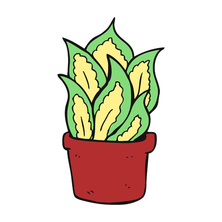 house plant: freehand drawn cartoon house plant