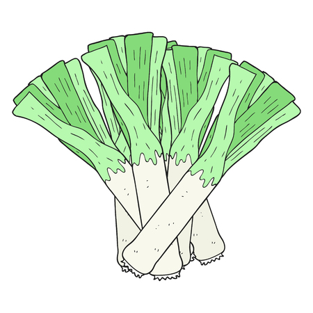 leeks: freehand drawn cartoon leeks