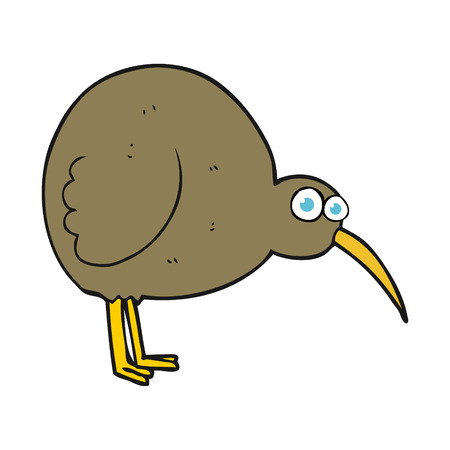 flightless: freehand drawn cartoon kiwi bird Illustration