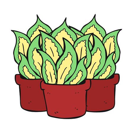 house plants: freehand drawn cartoon house plants Illustration