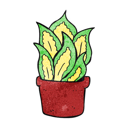 house plant: freehand textured cartoon house plant