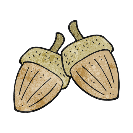 acorns: freehand textured cartoon acorns Illustration