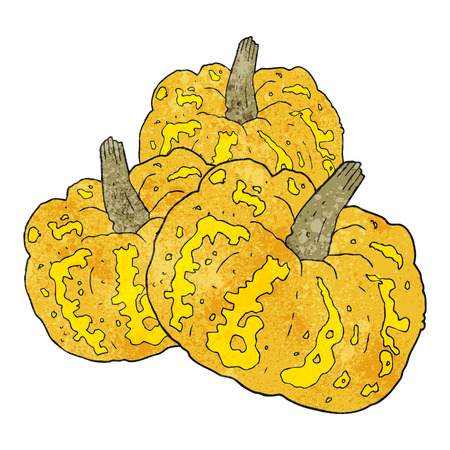 squash: freehand textured cartoon squash Illustration