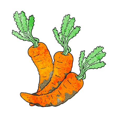 cartoon carrot: freehand drawn texture cartoon carrots