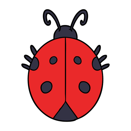 cartoon ladybug illustration design. Zdjęcie Seryjne - 94887243