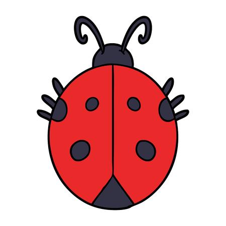 cartoon ladybug illustration design. Illustration
