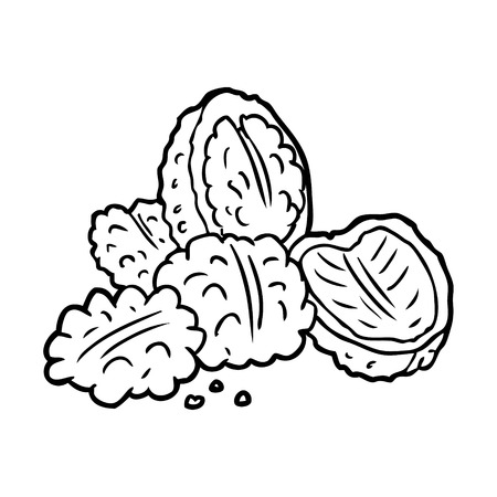 line drawing of a walnuts Banco de Imagens - 94922323