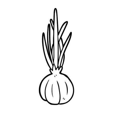 line drawing of a garlic bulb