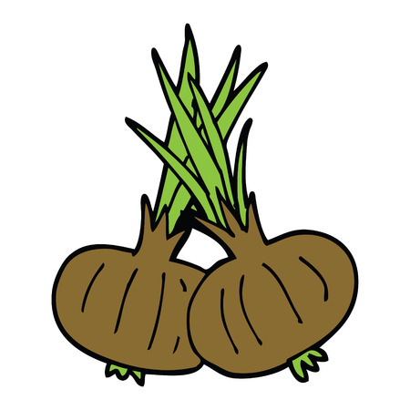 cartoon doodle brown onions Illustration