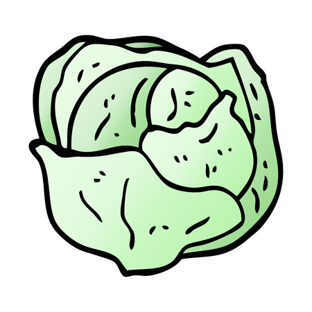 cartoon doodle organic lettuce Illustration