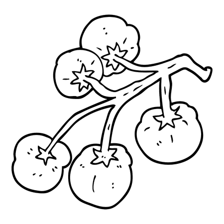 line drawing cartoon tomatoes on vine Ilustracja
