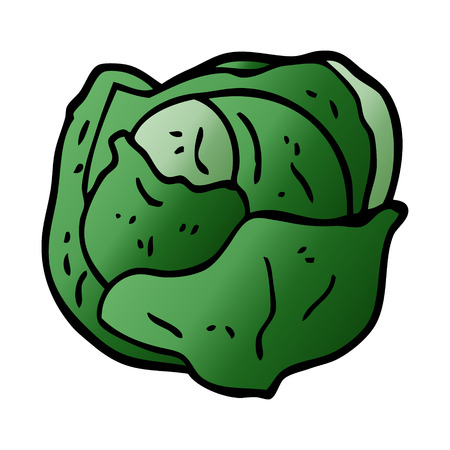 cartoon doodle cabbage Illustration