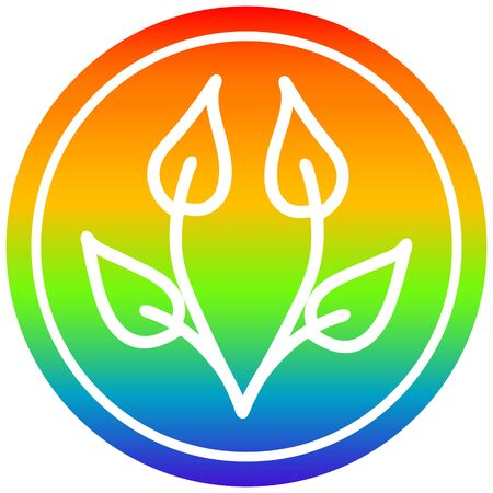 natural leaf circular icon with rainbow gradient finish