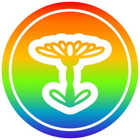 blooming flower circular icon with rainbow gradient finish