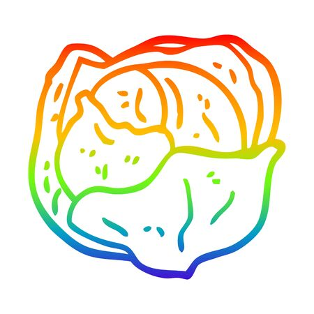 rainbow gradient line drawing of a cartoon cabbage