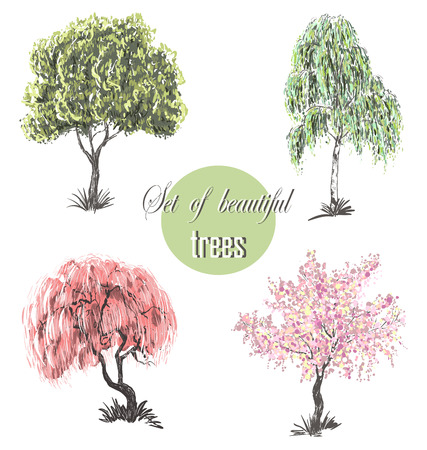 european white birch: Beautiful set of silhouette amazing trees for design. Cherry blossoms, cherry tree, birch, tree Japanese and European Illustration