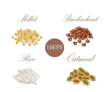 Groats. 10 EPS. Vector illustration. Millet, buckwheat, rice, oatmeal