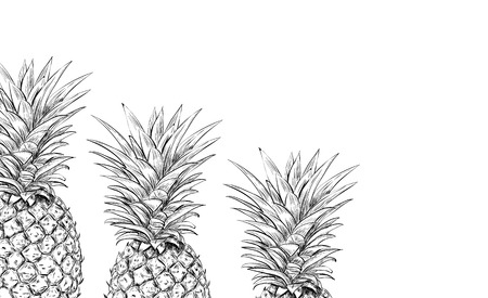 Pineapples on a white background for printing. Modern Design in Scandinavian style. Sketch three pineapples Illustration