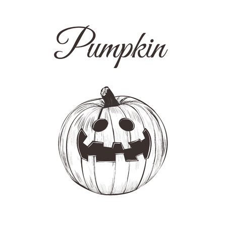 Pumpkin Halloween vector illustration. Pumpkin smiling hand drawing Illustration