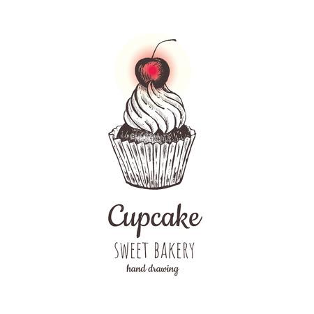 Cherry cupcake, cupcake vector. cup cake sketch