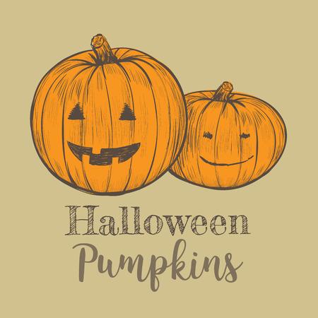Halloween pumpkin illustration. Pumpkins sketch hand drawing