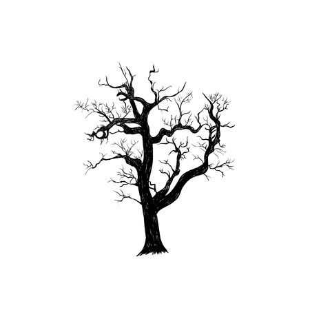 The dry old tree is terrible. Silhouette of a tree hand drawing. Tree sketch illustration