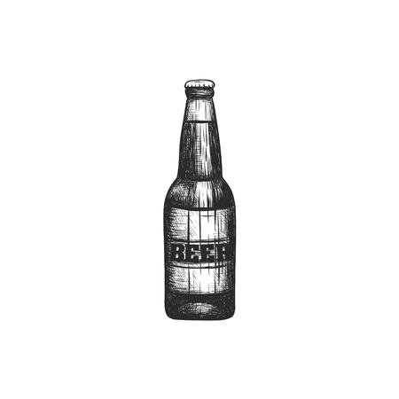 Bottle of beer illustration. Beer bottle sketch hand drawing