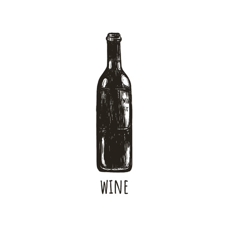 A bottle of wine retro sketch hand drawing. Bottle of wine illustration