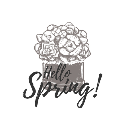 Hello Spring illustration hand drawing. Hello Spring, basket of flowers, sketch, bouquet, card, poster