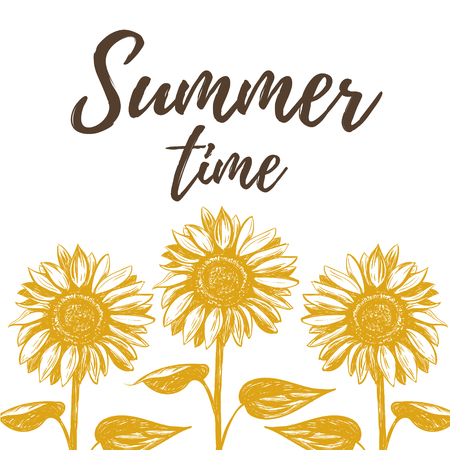 Summer time illustration with sunflowers