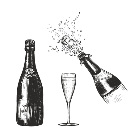 Champagne bottle and glass sketch vector illustration. Champagne spray hand drawing. Bottle collection