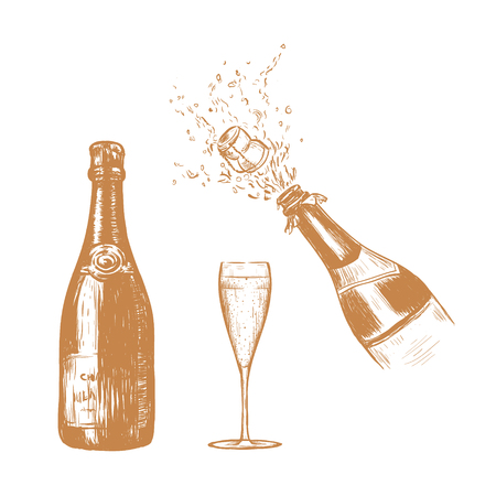 Champagne bottle and glass sketch illustration. Champagne spray hand drawing. Bottle collection